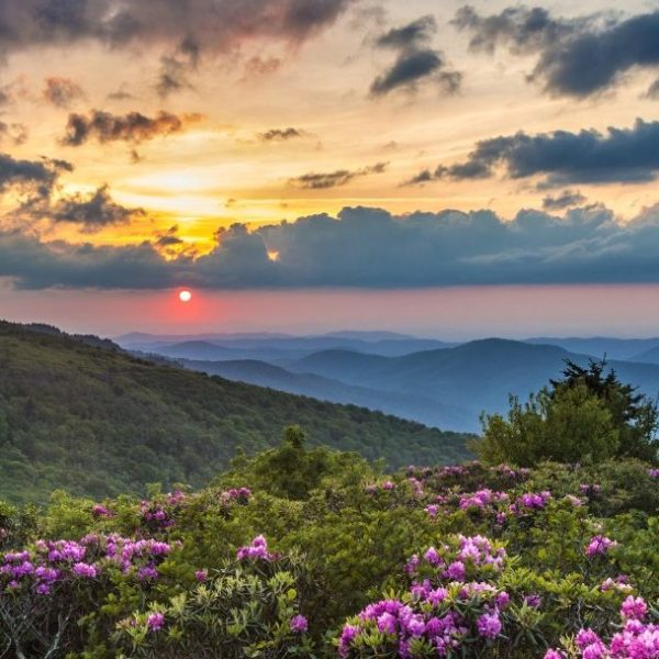 Local Attractions near Asheville, NC